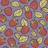 Cute raspberry pattern. Royalty Free Stock Photos