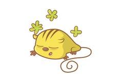 Cute Rat Stock Photos