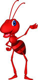 Cute red ant cartoon presenting