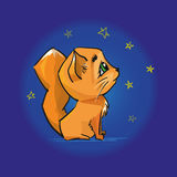 Cute red cat looking at the night sky and stars. Royalty Free Stock Photography