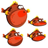 Cute red fish ball, four emotions, isolated images Stock Photos