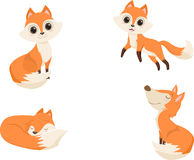 Cute red fox cartoon in various poses.  illustration Stock Images