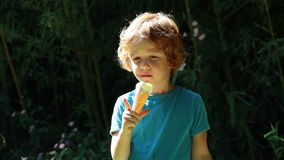 Cute red hair boy eating icecream in park stock video footage