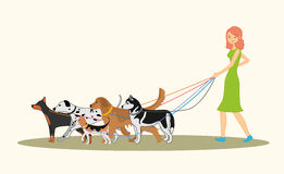 Cute red-haired girl walking many dogs. Of different breeds stock illustration