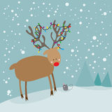 Cute red nosed reindeer and christmas mouse. Cute red nosed reindeer and mouse Royalty Free Stock Images