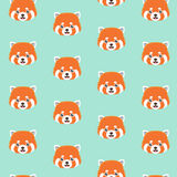 Cute red panda pattern. Royalty Free Stock Photo