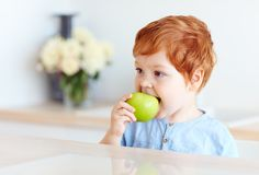Cute redhead toddler baby biting tasty green apple. Cute redhead toddler baby boy biting tasty green apple royalty free stock photo
