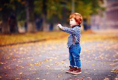 Cute redhead toddler baby boy pointing with fingers while walking among fallen leaves on autumn city street stock photography