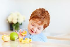 Cute redhead toddler baby tasting orange slices and apples at the kitchen royalty free stock photos