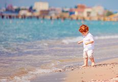 Cute redhead toddler baby walking along the summer beach stock photography