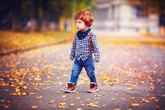Cute redhead toddler baby boy walking among fallen leaves on autumn street royalty free stock image
