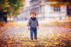 Cute redhead toddler baby boy walking among fallen leaves in autumn park royalty free stock photos