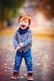 Cute redhead toddler baby boy walking among fallen leaves on autumn street stock photos