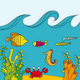 Cute reef vector Stock Photos