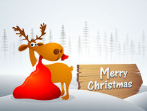 Cute reindeer for Merry Christmas celebration. Stock Photography