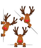 Cute reindeer peeking from behind in various positions Royalty Free Stock Photography