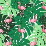 Cute Retro Seamless Flamingo Pattern Background Vector Illustration Stock Photos