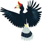 Cute Rhinoceros hornbill vector. Cute flying Rhinoceros hornbill cartoon vector stock illustration
