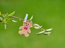 Cute romantic little teddy pegged on a branch in a field. A teddy is pegged to a branch in a field stock photo