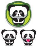 Cute Romantic Panda Bear Stock Image