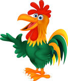 Cute Rooster Cartoon Presenting Royalty Free Stock Images