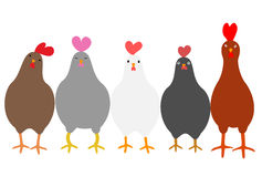 Cute roosters Stock Photos