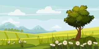 Cute rural landscape tree, field, daisy flowers, cartoon style, vector, illustration, isolated. Cute rural landscape tree, field, daisy flowers Royalty Free Stock Photography