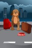 Cute sad dog Stock Image