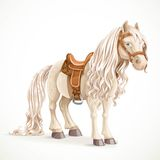 Cute saddled little pony horse Royalty Free Stock Photos