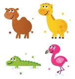 Cute safari africa animals set. Safari animals - giraffe, camel, croc and flamengo. Vector cartoon Stock Photo