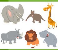 Cute safari animals set. Cartoon Illustration of Cute Safari Animal Characters Set stock illustration
