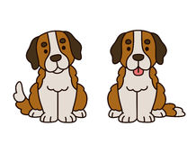 Cute Saint Bernard puppy Royalty Free Stock Images