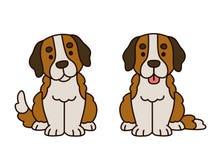 Cute Saint Bernard puppy Royalty Free Stock Images