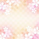 Cute sakura blossom. Cherry blossoms on checkered pattern background Royalty Free Stock Photo