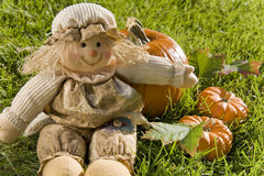 Cute scarecrow doll with pumpkins Royalty Free Stock Photo
