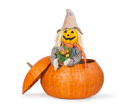 Cute scarecrow peeking out from a pumpkin basket Royalty Free Stock Image