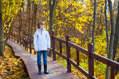 Cute school boy in park on wooden path way Stock Photography