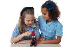 Cute school girls with microscope stock photography