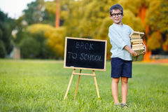 Cute schoolboy carrying a large stack of books. Cute little schoolboy feeling excited about going back to school Royalty Free Stock Photography