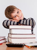 Cute schoolboy Royalty Free Stock Image