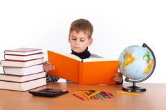 Cute schoolboy is reading a book Stock Image
