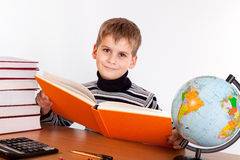 Cute schoolboy is reading a book Stock Photography