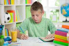 Cute schoolboy reading and  studying Royalty Free Stock Images