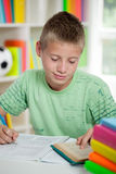 Cute schoolboy reading and  studying Royalty Free Stock Photography