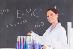 Cute scientist showing the equations Royalty Free Stock Photo
