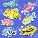 Cute sea animal stickers11 Royalty Free Stock Photos