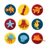 Cute sea animals icons in color circles for stickers and icons for children designs vector illustration