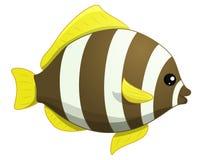 Cute sea fish.Cartoon illustration. Cute sea fish.Cartoon vector Stock Photography