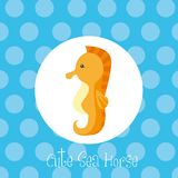 Cute sea horse Stock Photo