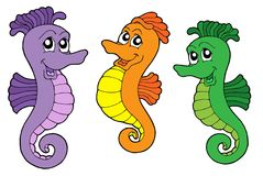 Cute sea horses vector illustration stock illustration
